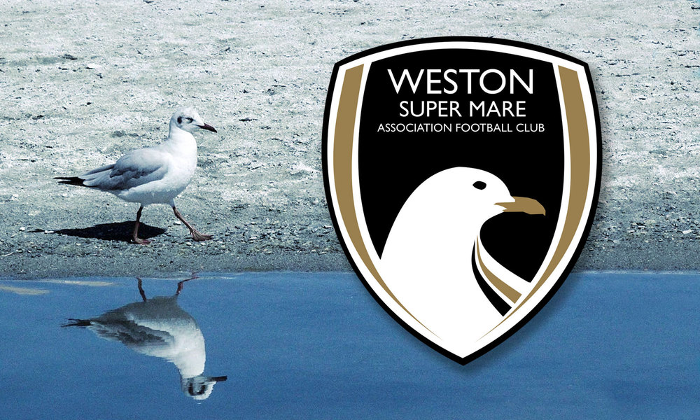 Seagulls appoint New Manager
