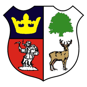 Cinderford Town's club badge